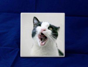 Ceramica cuore Dekal per animali